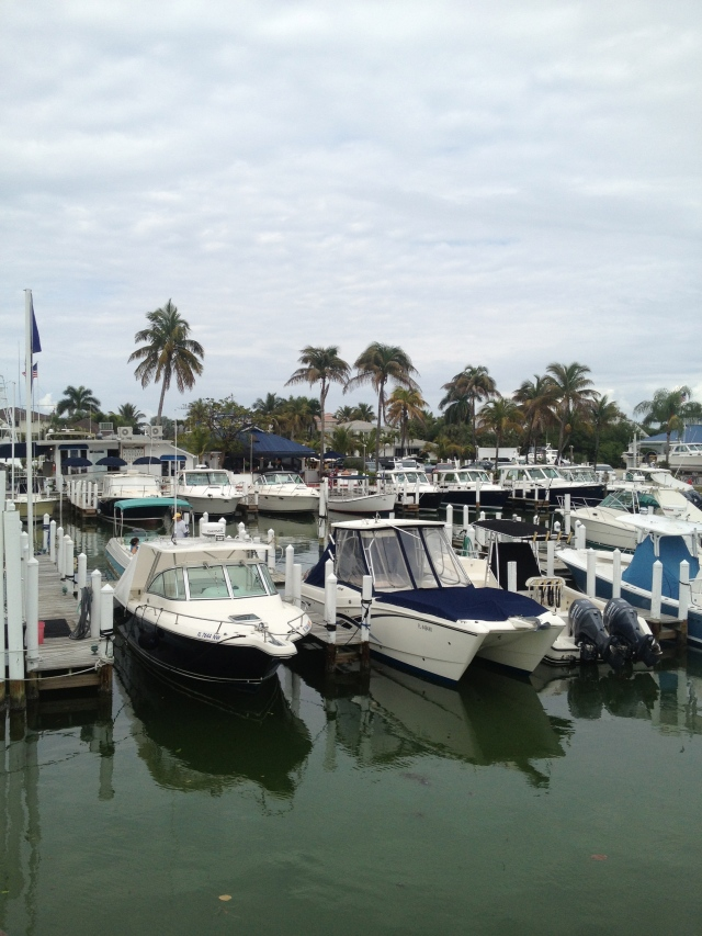 The marina.  What you do not see in this photo are the porpoises and the osprey patrolling the canals looking for fish.