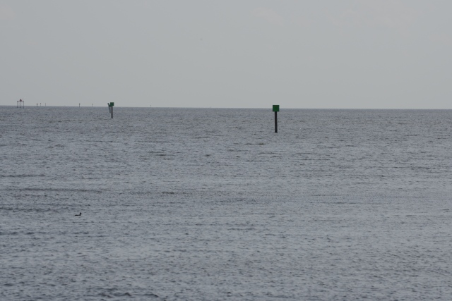Navigational aids lead the way through the dredged channel.