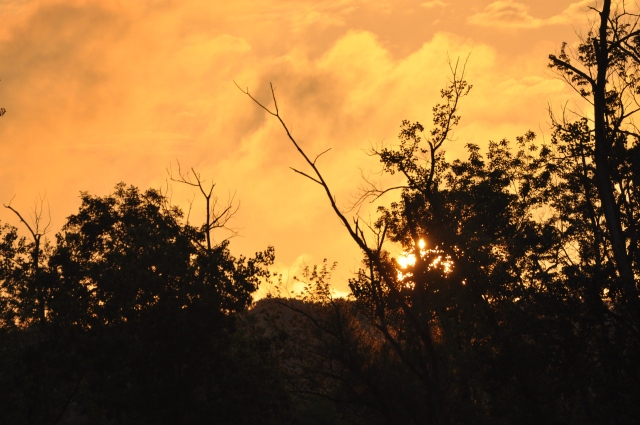The sky bursts into flames at sunset; just part of the inspiration to paint Hudson River landscapes.