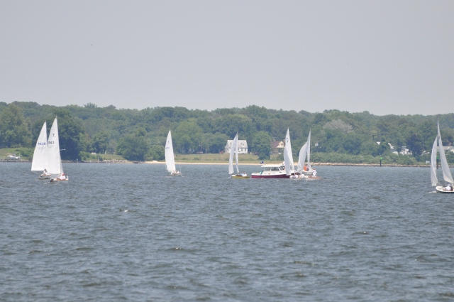 Skirting a sailing race.
