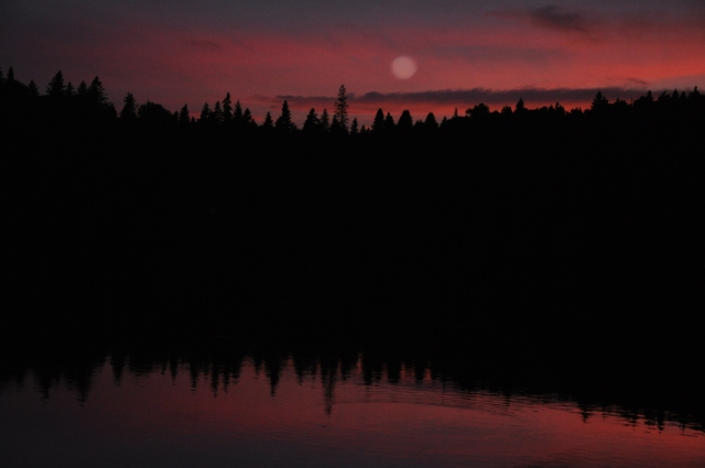 Moonrise. Hope that everyone enjoyed the summer solstice.