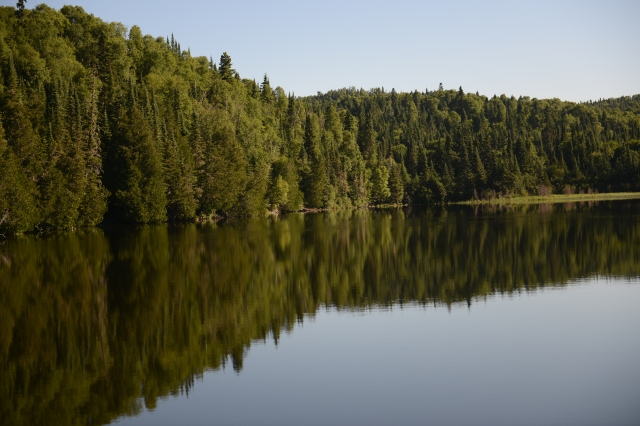 The still and peaceful upper arm of Otter Cove is filled with reflections.